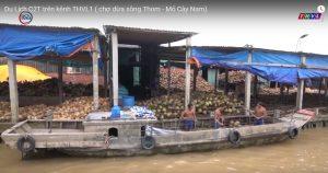 Hình 02. Cuộc sống trên chợ dừa nổi quê mình