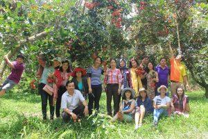 Du khách tham quan vườn chôm chôm cùng du lịch C2T
