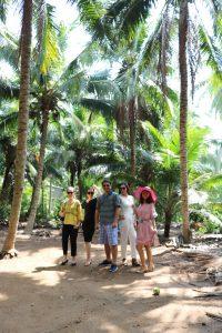 Hình ảnh tham quan vườn dừa dứa, uống nước dừa tại vườn - du lịch c2t