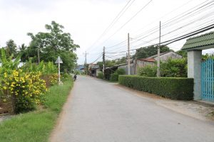 Đường quê xanh mát, hàng rào ở Phú Vang, Bình Đại, du lịch c2T